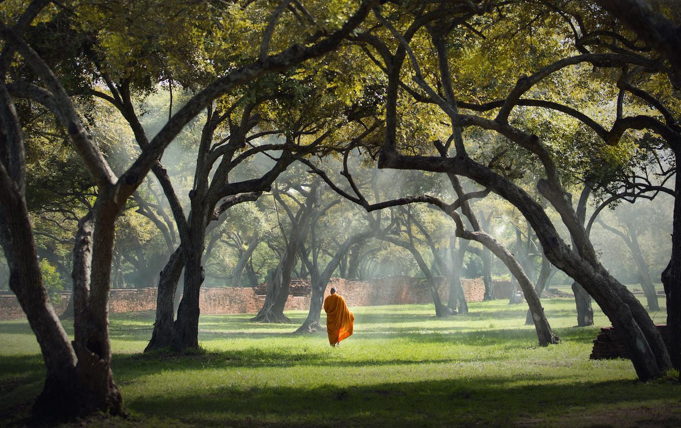 A Brief History Of Buddha's Awakening