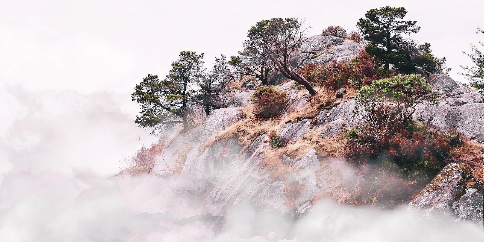 Niebla mental: cómo superar la fatiga mental